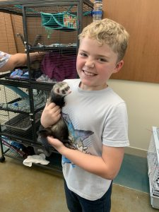 A boy, holding at ferret, at the SPC Veterinary Technology Center