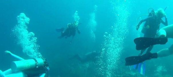 Bonaire Study Abroad
