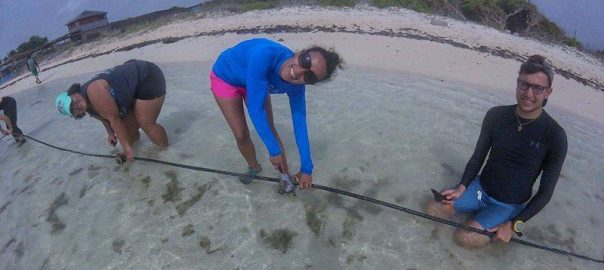 SPC Bonaire study abroad program