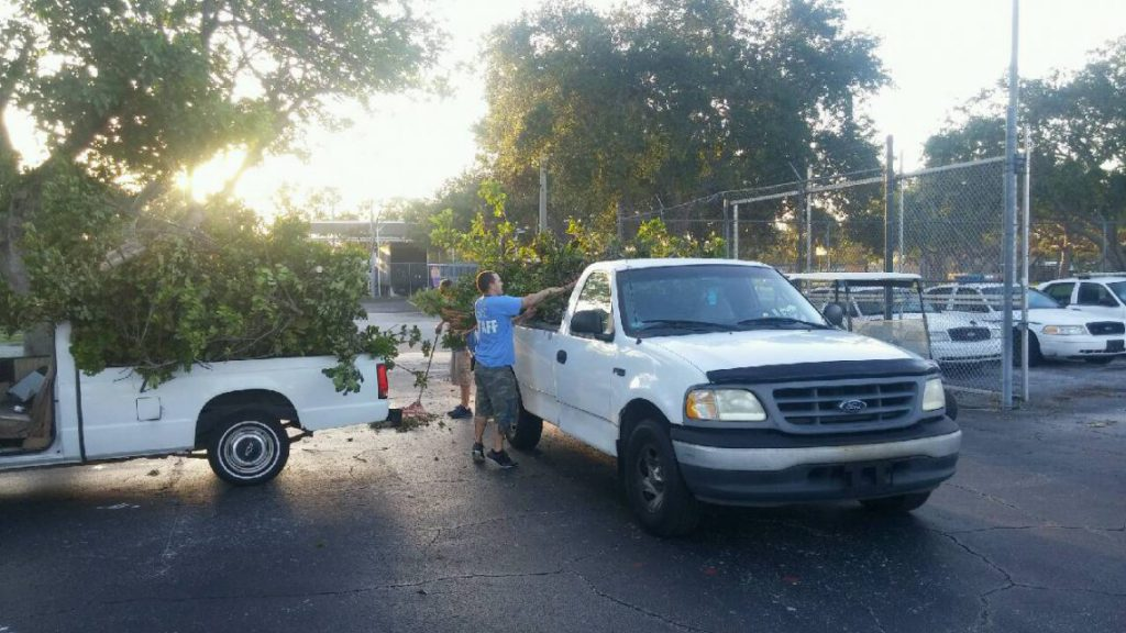 SPC facilities staff work to clear campuses of debris following Hurricane Irma