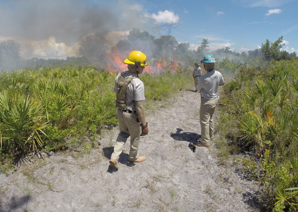 St. Petersburg College Firefighting Academy cadets assessing a brush fire (Photo: Chris Pearl, St. Petersburg College Firefighting Academy #43 cadet)