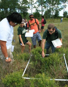 Students study the relative abundance of plant species using different transect methods during the Field Biology of Florida course at St. Petersburg College.