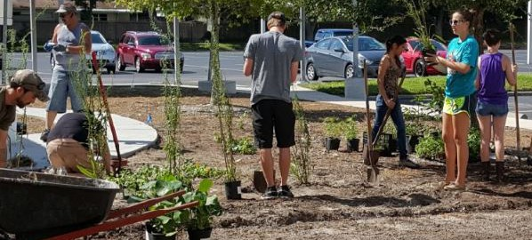 Students volunteer at Clearwater campus beautification